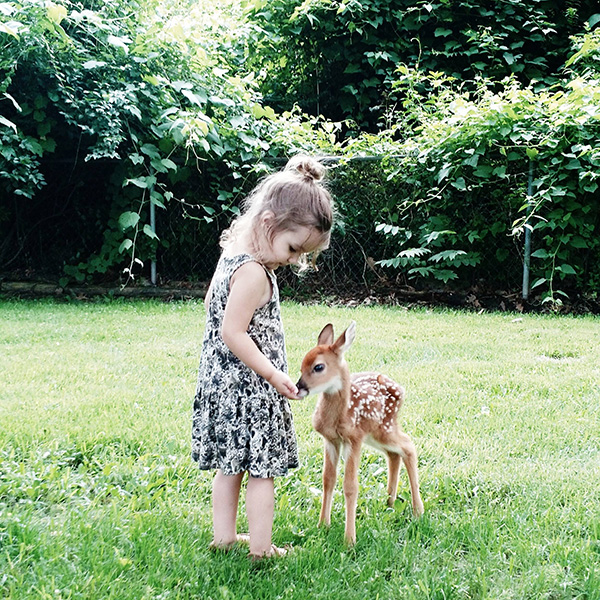 little girl with fawn