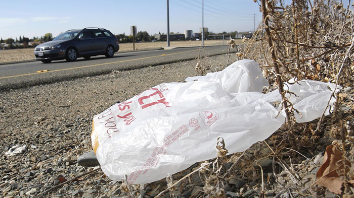 Hawaii first state to ban plastic bags