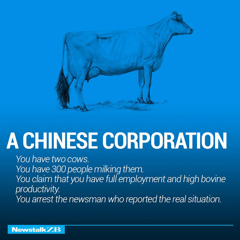 economies explained with cows funny