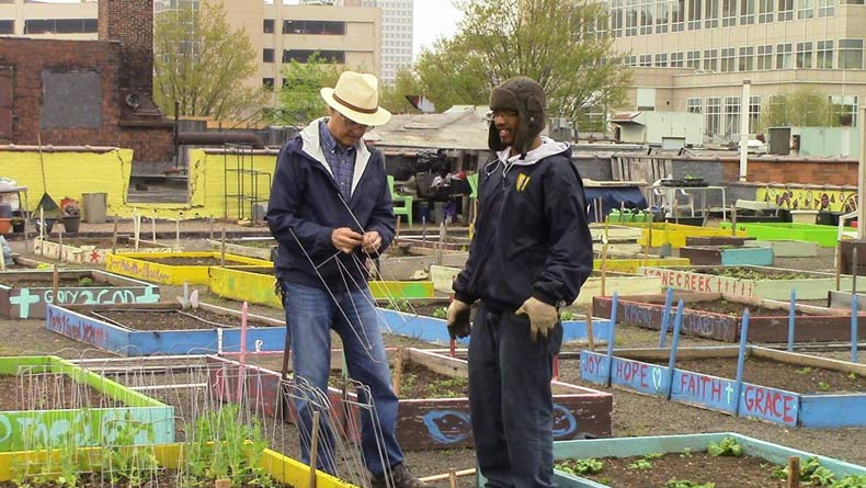 homeless plant rooftop garden