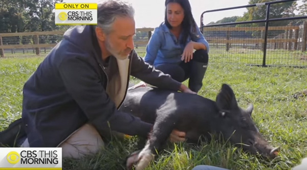 jon stewart animal sanctuary