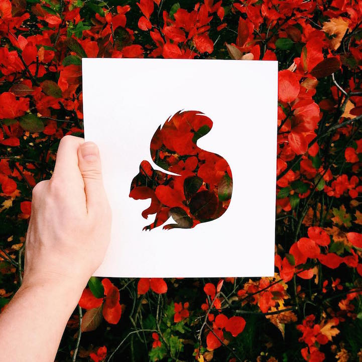 nature cutouts