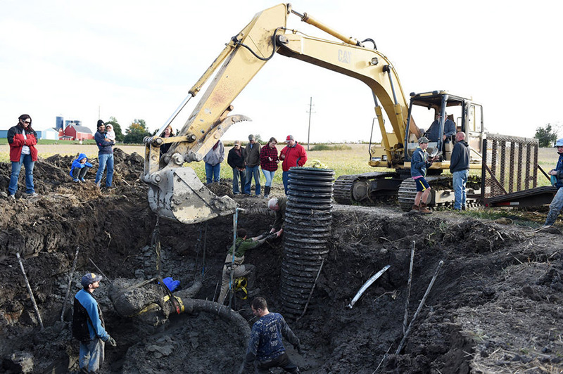 farmer finds woolly mammoth bones