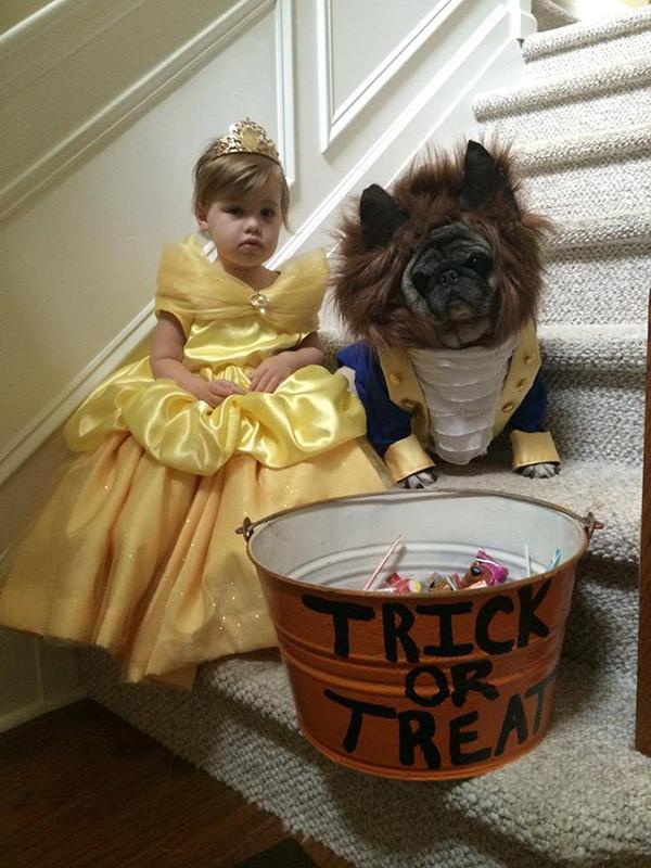 beauty and beast kid dog costume