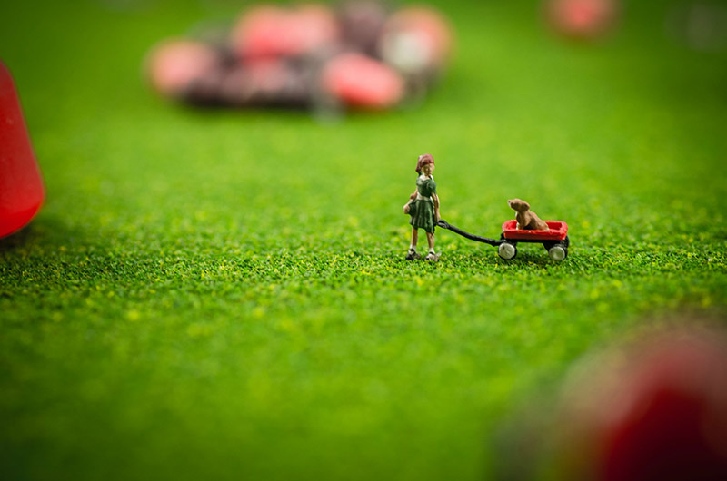 tiny people harvesting candy