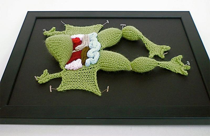 cruelty free knitting anatomy