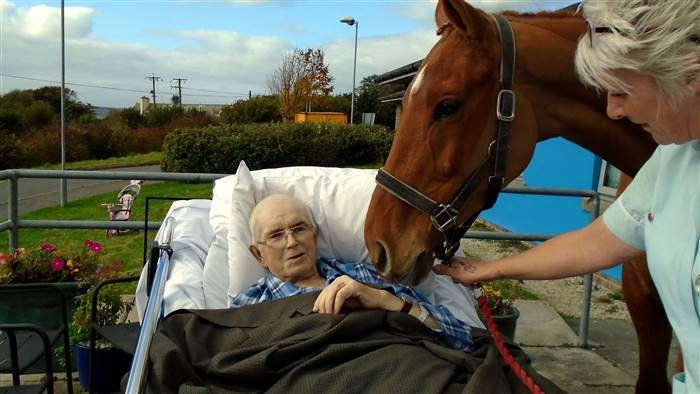 dying man wish to see horse