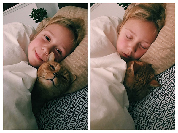 buddy bedtime