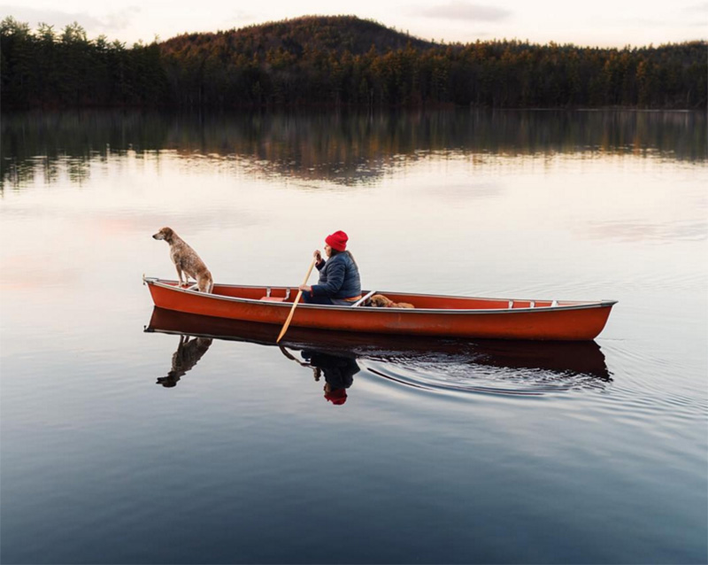 photographer takes dog on adventures