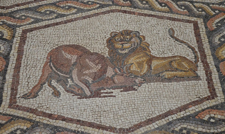 ancient mosaic unearthed