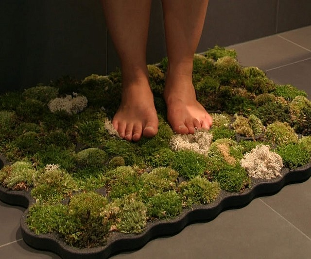 Moss Shower Mats Live Off The Water That Drips Off Of You