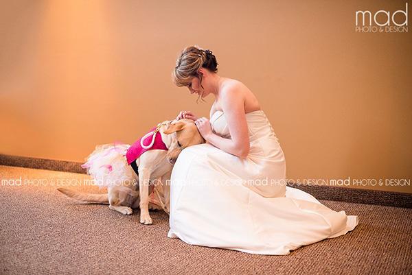 service dog owner wedding day