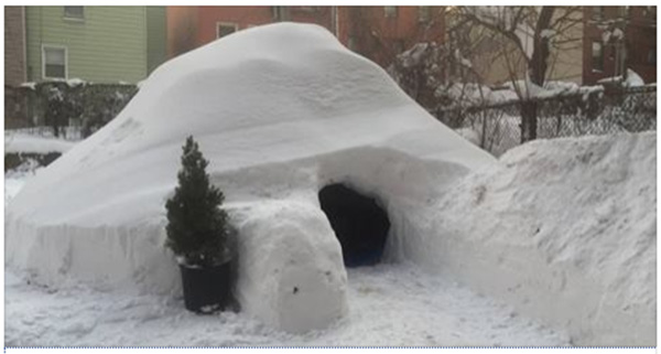 igloo for rent