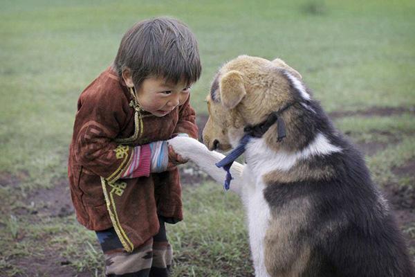 child dog respect