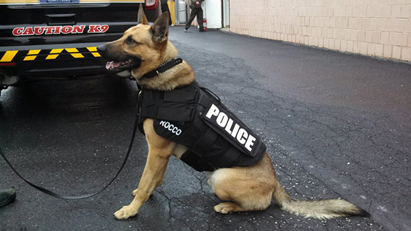 anderson cooper donates k9 bullet proof vests