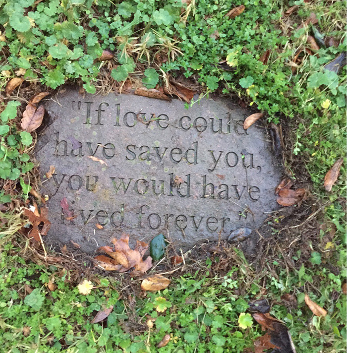 if love could have saved you grave stone