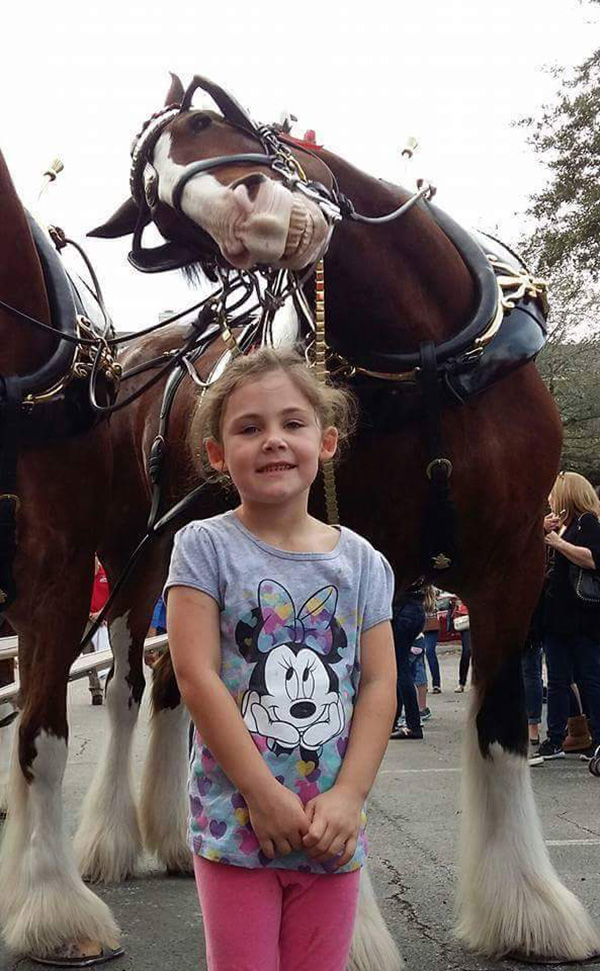horse photobombs little girl