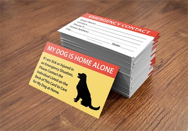 dog emergency card