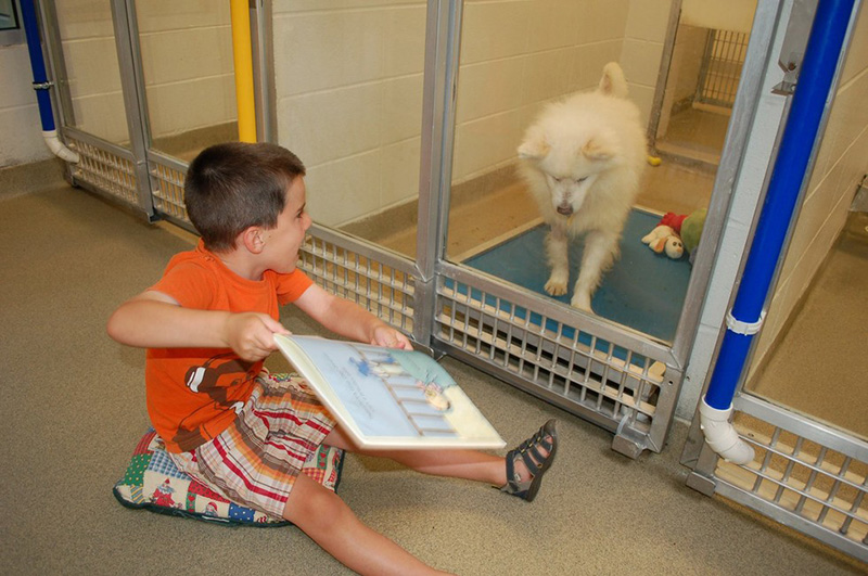 kids reading program animal shelter