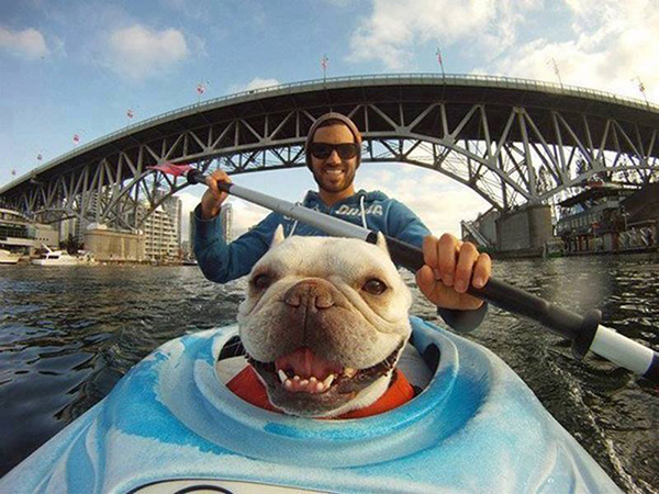 great selfie dog in kayak