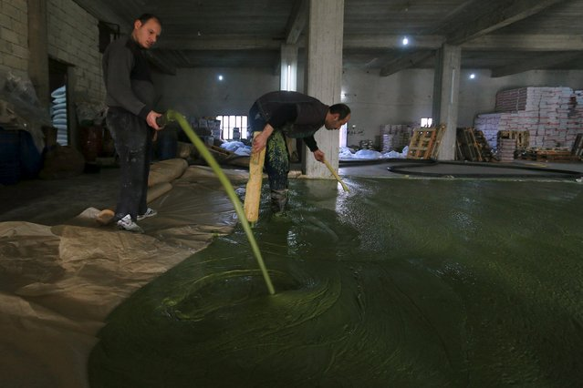 how they make olive oil soap in syria