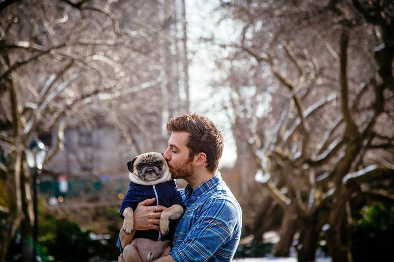 guy and pug photo shoot