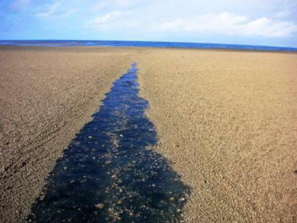 sandbar middle of ocean island creation