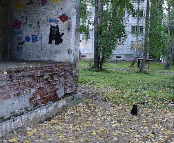 kitten funny mural