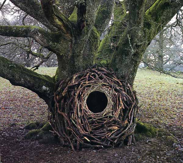 amazing nature sculptures