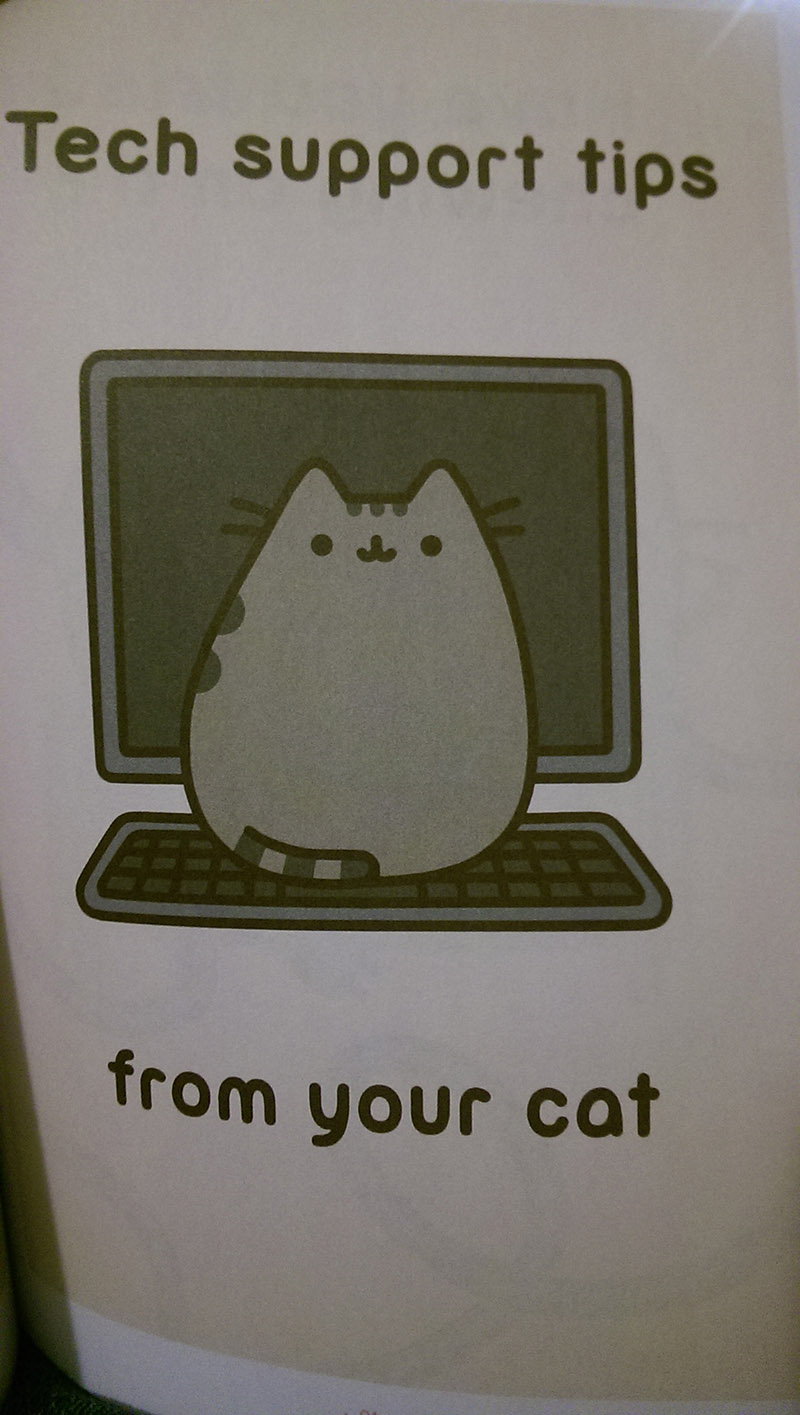 cat tech support funny