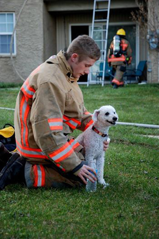 puppy smiling fire rescue