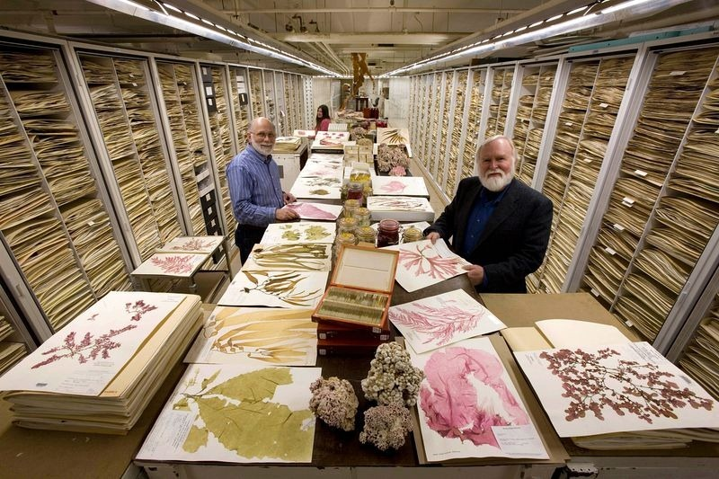 inside the specimen collections of the Smithsonians Museum of Natural History