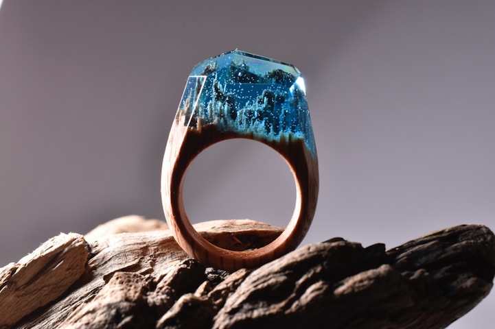 wood rings beautiful landscapes