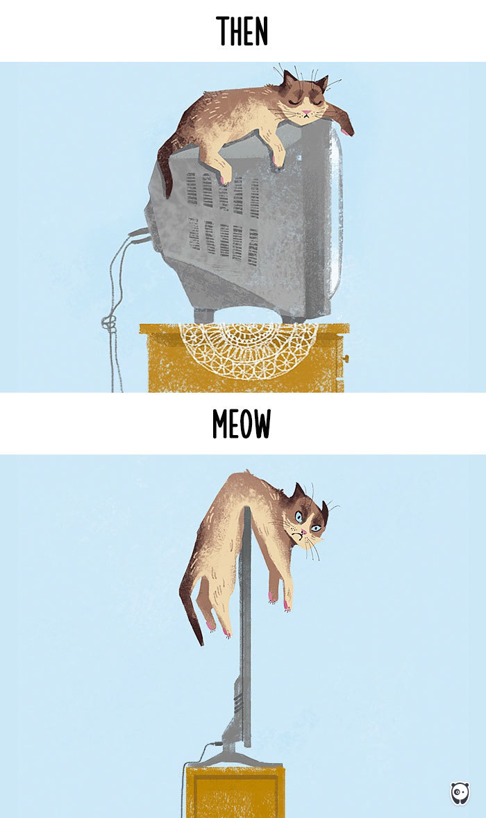 cats then and now technology