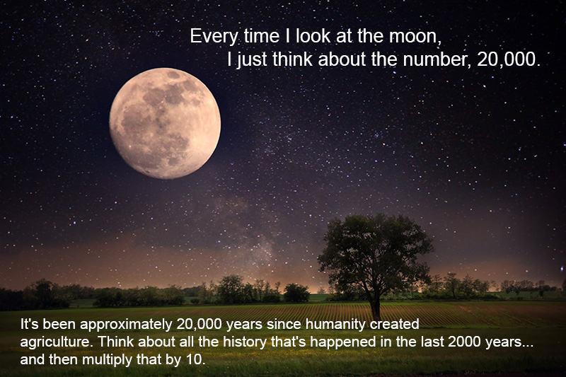 every time I look at the moon 20000