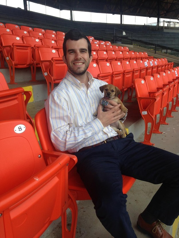 abandoned dog becomes bat dog baseball team