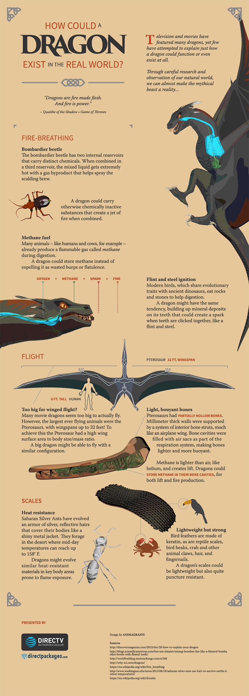 how a dragon could exist in real life