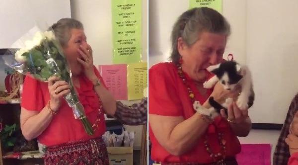 cat surprise for teacher