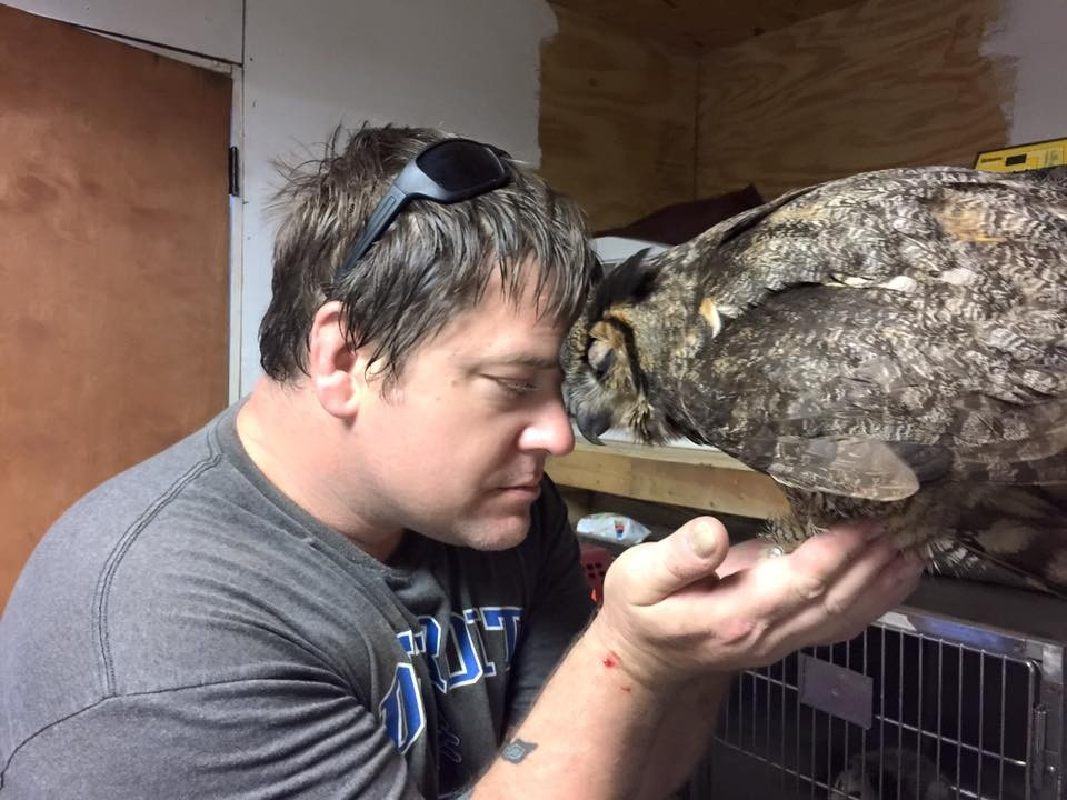 owl hugs man who saved it