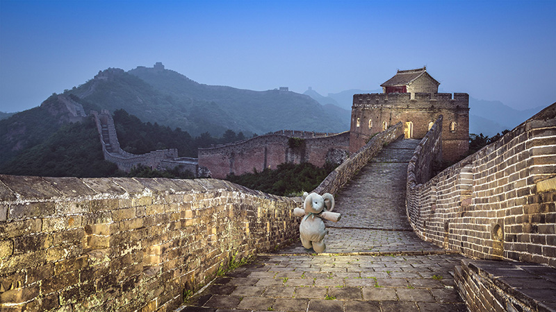 kid loses stuffed elephant travels world