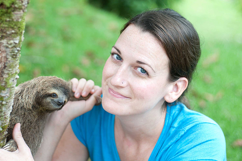 baby sloth rescue pictures