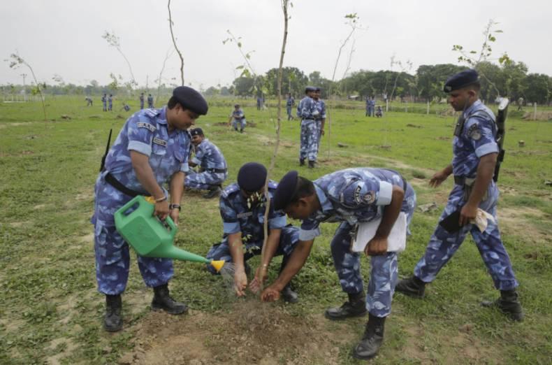 800 thousand people break tree planting world record