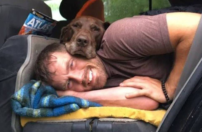 guy takes dying dog on farewell trip of lifetime