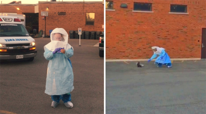 skunk rescue in outbreak suit