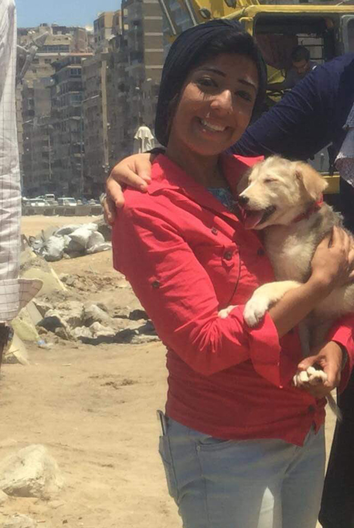 Egyptians spend 5 days rescue trapped dog in rocks