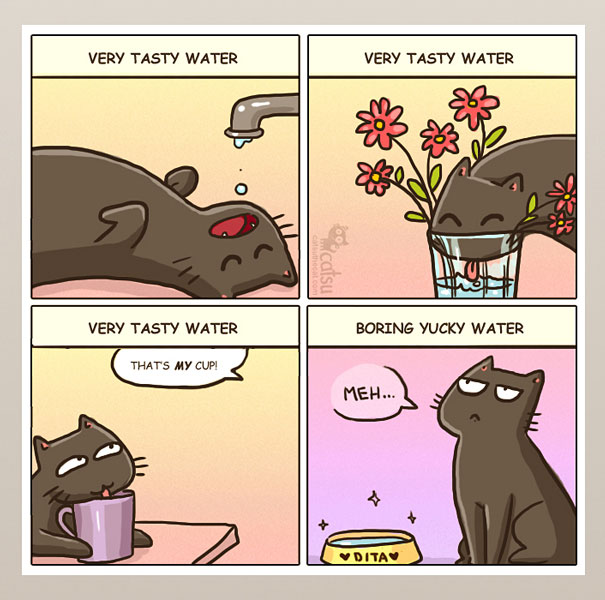 If You Own A Cat, These Comics Purrfectly Describe Your Life  04d6t-funny-cat-comics-1