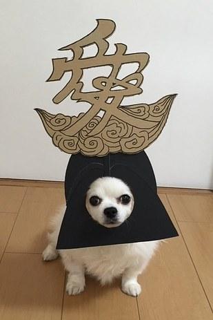 dog cardboard cutouts
