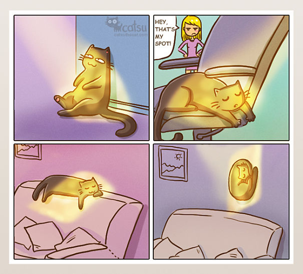 If You Own A Cat, These Comics Purrfectly Describe Your Life  Xkayh-funny-cat-comics-4