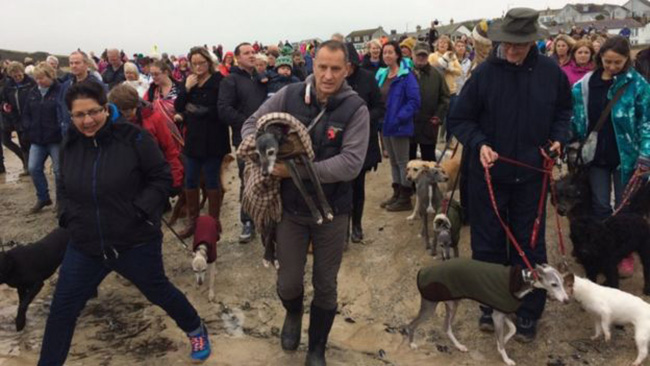 hundreds join walnut final walk on beach