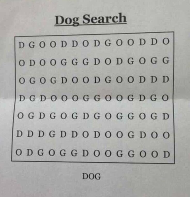 can you find dog in word search